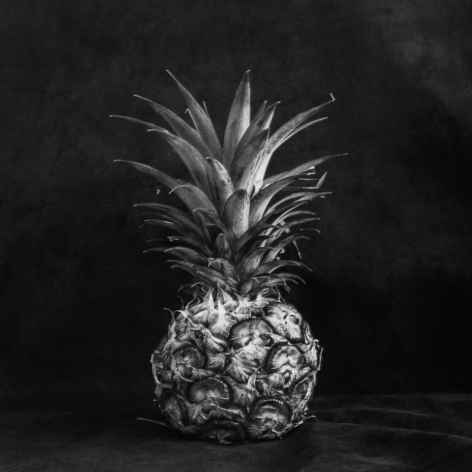 Pineapple light study #01 - Shanghai GP3 100 shot at EI 400. Black and white negative film in 120 format shot as 6x6. Push processed 2 stops.