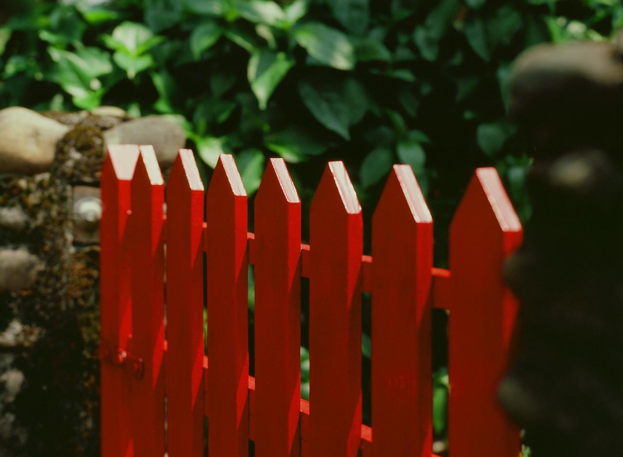 Picket fence - Fuji Velvia 100 (RVP100) shot at EI 100. Color reversal (slide) film in 120 format shot as 6x6.