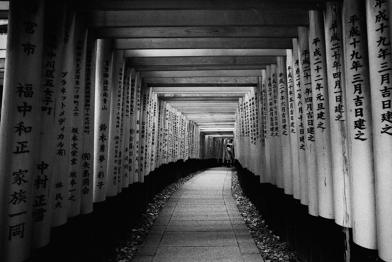 To infinity - Shot on Eastman Double-X (5222) at EI 200. Black and white negative film in 35mm format.